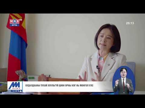 Д.Өнөрболор: Монгол Улсад худалдааг зохицуулсан тусгай хууль байхгүй