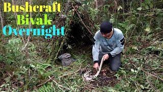 Video Bushcraft indonesia #bushcraftbivak #bushcraftsolo                  Bushcraft solo shelter overnight MP3, 3GP, MP4, WEBM, AVI, FLV April 2019