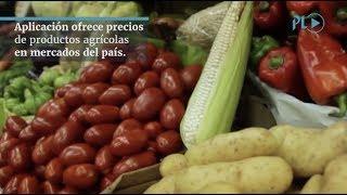 Aplicación móvil ofrece precios de productos agrícolas en mercados del país    MP pide que se enjuicie a señalados en caso Plazas Fantasmas del Congreso   Localizan cadáveres de cuatro migrantes guatemaltecos en el río Bravo.