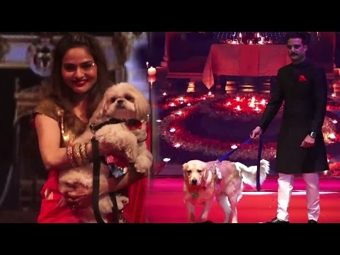 Download Bollywood With Their Pets Dog & Cats HD Mp4 3GP Video and MP3