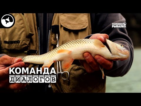 прогноз рыбалки в грозном