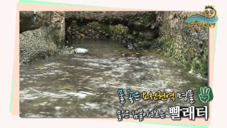 Namwon-si South Korea  city images : [살고싶은 농촌, 살기좋은 농촌]전북 남원 요천마을(Yocheon Village)