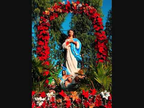 Cantos a la Purísima - Por eso el cristianismo, oh virgen de concepción, sale al mundo.wmv