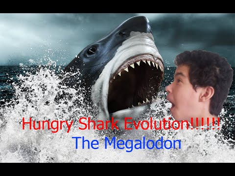 hungry shark evolution: le MEGALODON!!!