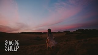 Wildes Illuminate music videos 2016