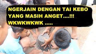 Video Video Lucu Banget, Ngerjain Bocah Ngakak!!! Paling Lucu Sepanjang 2018 MP3, 3GP, MP4, WEBM, AVI, FLV April 2019