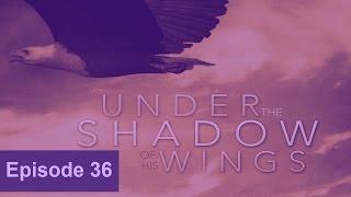 20170308 l KSM l Under the Shadow of His Wings l Episode 36 l Pas.Michael Fernandes