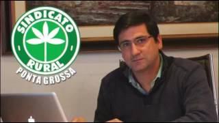 O presidente do Sindicato Rural de Ponta Grossa, Gustavo Ribas Netto, fala sobre produtividade.