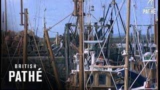 Buckie United Kingdom  city photos : Scottish Fishing Boats (1971)