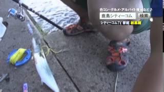 シティーコムTV 第41回前半釣り総集編