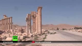 Запад хочет показать слабость Асада в борьбе против ИГ — эксперт о захвате Пальмиры
