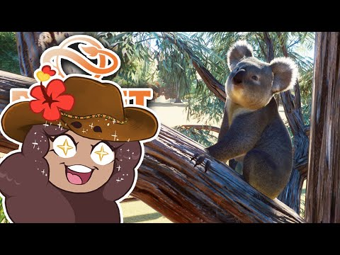 Clamoring About with KOALAS!! 🐨 Planet Zoo: Outback Expedition • #10