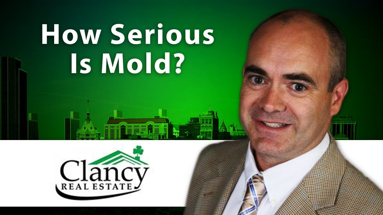 How Serious Is the Presence of Mold?
