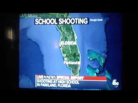 PARKLAND FLORIDA VALENTINE DAY MASSACRE shooting high school shooting 3dead