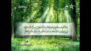 Recitation of the Sheikh Rachid belasheyyah تلاوة مميزة للمقرئ رشيد بلعشية الحزب 19