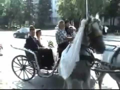 Best Wedding Fail Compilation 2012  (Video)