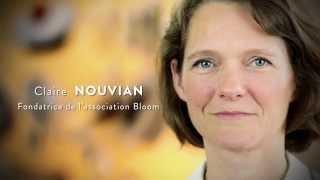 CLAIRE NOUVIAN, Bloom,