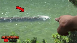 Video Sudah Terlanjur Viral!! Dikira ikan Raksasa, Warga Kaget!! Saat Melihat Sosok ini Muncul! MP3, 3GP, MP4, WEBM, AVI, FLV Agustus 2019