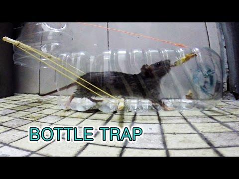 自製塑膠捕鼠器,抓到老鼠的那一瞬間太刺激啦!!!