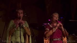 Video Euphorica - Rukavice pletené