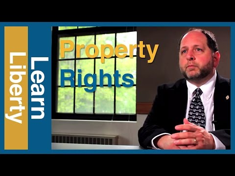 Property Rights: The Little Guy's Best Friend