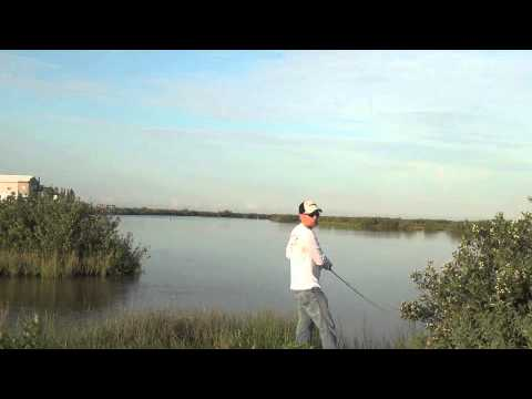 Highway 1 Speckled Trout – Grand Isle, LA