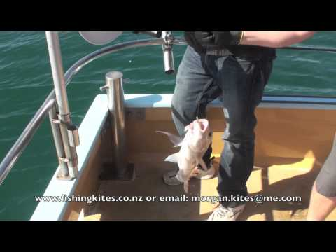 Snapper Longline Fishing From A Charter Boat