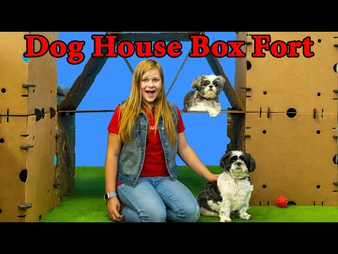 Assistant Makes Wiggles and Waggles a Giant Doggy Box Fort Mansion