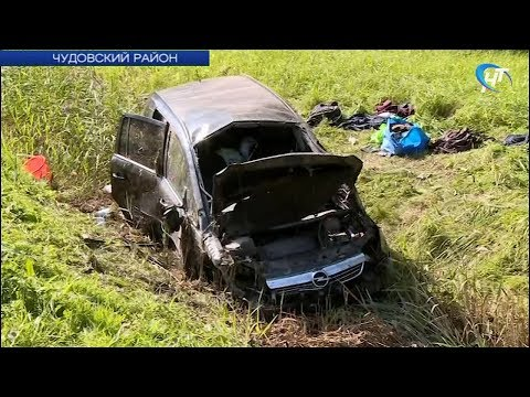 В Чудовском районе водитель, уснувший за рулем легковушки, чудом остался жив