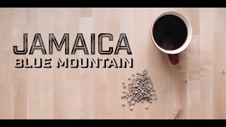 Here we take a look at one of the more rare and unique coffees of the world, the Jamaica Blue Mountain! Check Out...