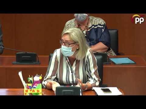 Cortés propone incluir profesionales de la terapia ocupacional en los centros educativos aragoneses