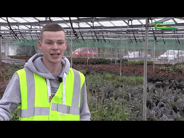 Paul Merrigan - Teagasc Horticulture Student