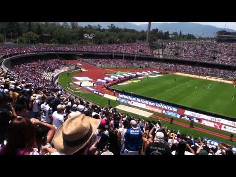 Pumas vs Chivas 20/04/2014 La Rebel Puto rebaño - La Rebel - Pumas