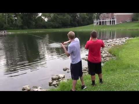 "Bass Fishing – ""The Summer Feed"""