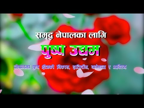 Floriculture in nepal
