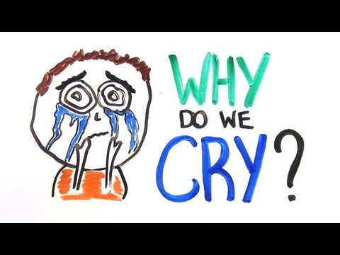 Why Do Humans Cry?
