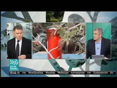 Ο Αλέξης Κούγιας στον Σπύρο Χαριτατο για την υπόθεση Τοπαλούδη και Κορκονέα | 27/02/19 | ΕΡΤ