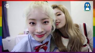 Video TWICE BEING GAY🏳️‍🌈 ft. gayest unnie line | Twice Moment 🎬 MP3, 3GP, MP4, WEBM, AVI, FLV September 2019