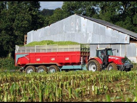 ensilage - Ensilage de maïs 2012 avec MASSEY FERGUSON : 6280 / 6495 / 6497 / 7499 CLAAS JAGUAR 950; CARGOS 9500. BIG LAIR.