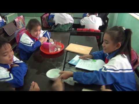 Video về tiết dạy môn khoa học lớp 4