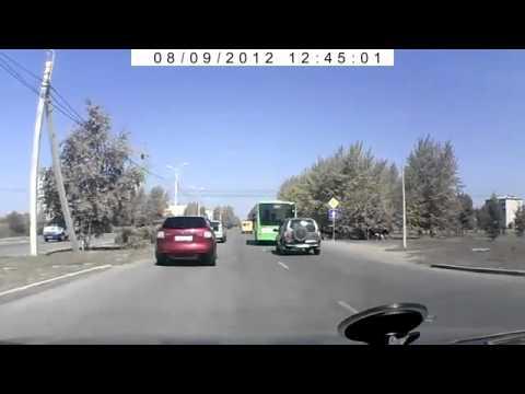 Телка выскочила на дорогу прямо перед машиной