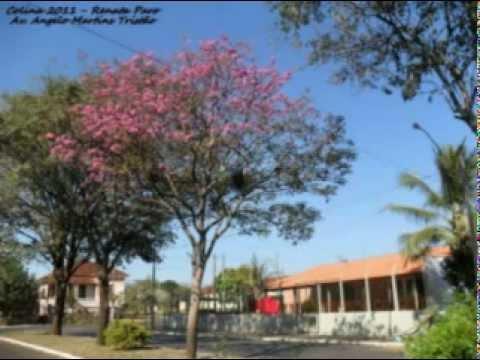 CLIP DA AVENIDA ÂNGELO MARTINS TRISTÃO EM COLINA.mpg