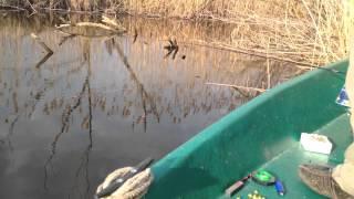 Весенняя рыбалка в Мумрах (ловля красноперки)