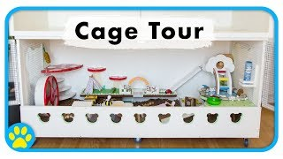 Garden Themed Hamster Cage Tour | The Beaker Cage by ErinsAnimals