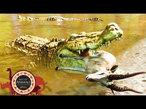 Age Of Animals - Novo Jogo De Animais, Vida Na Africa, Crocodilo e Leões! (#1) (PT-BR)
