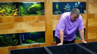 Indoor Ponds are here! [Fish Room Vlog] by Aquarium Co-Op