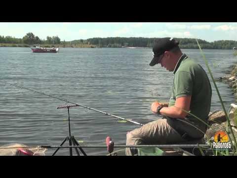 ловля рыбы фидером обучение