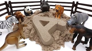 Video Animals Sand Bath Time~! Learn Animal Names with Kinetic Sand MP3, 3GP, MP4, WEBM, AVI, FLV Desember 2017