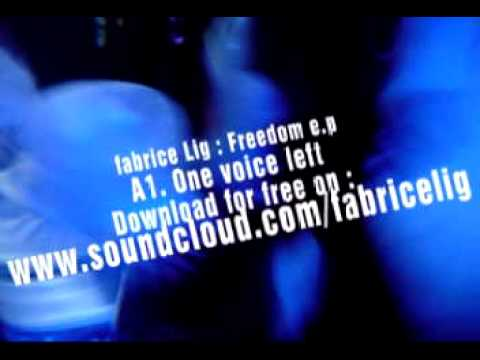one_voice_left.avi