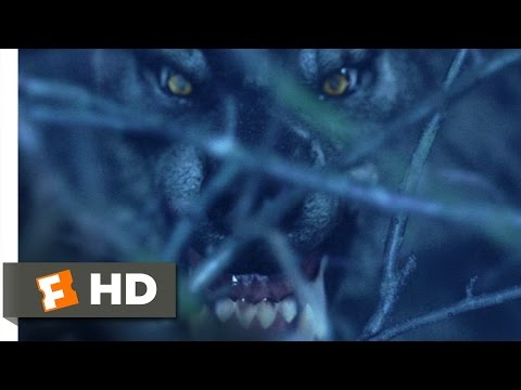 Van Helsing (2004) - Werewolf On The Loose Scene (1/10) | Movieclips